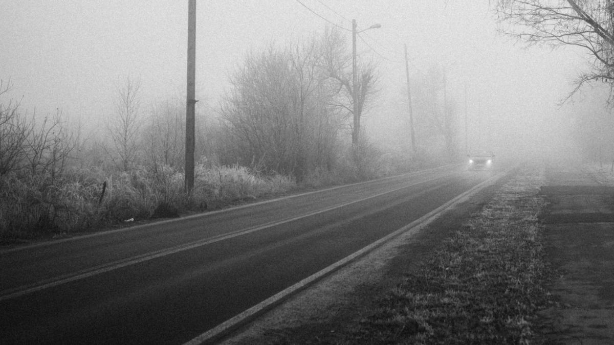 Misty Morning Drive